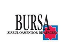 Bursa online